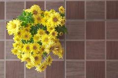 Fleurs jaunes de marguerite Photographie stock libre de droits