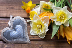 Fleurs jaunes de narcisse et de tulipes et coeur décoratif Photographie stock libre de droits