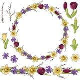 Fleurs jaunes de narcisse Guirlande rouge de Paeonia illustration libre de droits