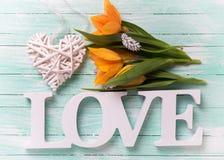 Fleurs jaunes de tulipes, amour de mot et coeur décoratif blanc Photographie stock