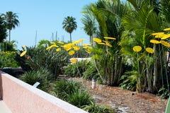 Fleurs jaunes en plastique en parc Images stock