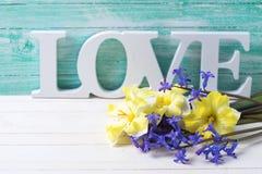 Fleurs jaunes et bleues fraîches de ressort et amour de mot sur la turquoise Photographie stock
