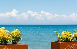 Fleurs jaunes et vue de la mer Méditerranée sur la côte de la Turquie Photographie stock libre de droits