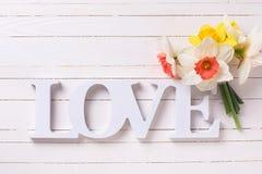 Fleurs jaunes fraîches de narcisse et amour de mot Images libres de droits