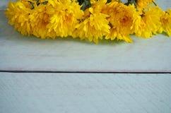 Fleurs jaunes sur un fond de turquoise Images stock