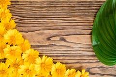 Fleurs jaunes sur un fond en bois Photos stock