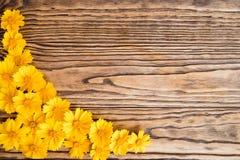 Fleurs jaunes sur un fond en bois Images libres de droits