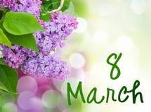 Fleurs lilas dans le jardin Photographie stock libre de droits