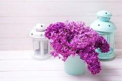 Fleurs lilas de ressort olorful de ¡ de Ð en boîte et turquoise lumineuse et Images libres de droits