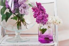 Fleurs lilas fraîches dans la fin en verre de vase sur le fond blanc Photos stock