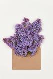 Fleurs lilas sous enveloppe brune Photos stock