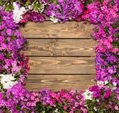 Fleurs lilas sur le fond en bois Photo stock