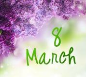 Fleurs lilas sur le vert Images libres de droits