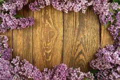 Fleurs lilas sur un fond en bois, cadre photo stock