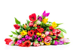 Fleurs lumineuses Photo stock