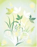 Fleurs lumineuses d'été. Illustration Stock