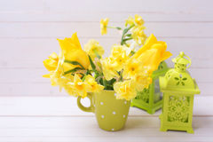 Fleurs lumineuses de jonquilles dans la tasse Photos stock