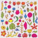 Fleurs lumineuses et feuilles d'imagination réglées Illustration tirée par la main Photographie stock libre de droits