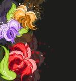 Fleurs lumineuses sur le noir Photo stock