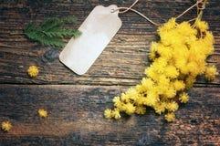 Fleurs 8 mars de carte postale et de mimosa Images stock