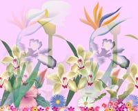 Fleurs mignonnes Images stock