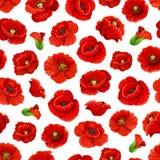 Fleurs modèle sans couture, vecteur de pavot illustration libre de droits