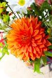 Fleurs oranges et blanches Photographie stock libre de droits