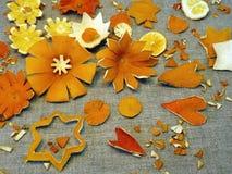 Fleurs oranges sèches de fruits Photo libre de droits