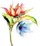 Fleurs originales d'été Photographie stock libre de droits