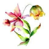 Fleurs originales d'été Image libre de droits