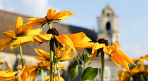 Fleurs par l'église Image libre de droits