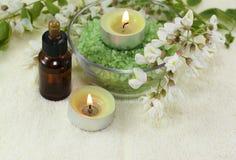 Fleurs parfumées, acacia Photos libres de droits