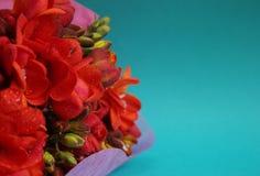 Fleurs pendant un jour spécial Images stock