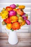 Fleurs persanes de renoncule dans un vase Image libre de droits