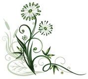 Fleurs, plante aquatique illustration de vecteur