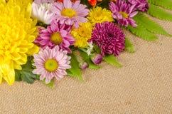 Fleurs polychromes Photo stock