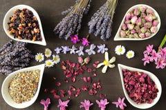 Fleurs pour l'aromatherapy photos libres de droits