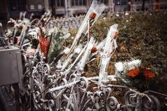 Fleurs pour l'hommage image libre de droits