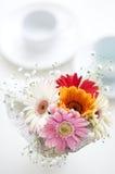 Fleurs pour la table Images libres de droits
