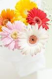 Fleurs pour la table Photos stock