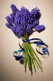 Fleurs pourprées Photo libre de droits