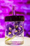 Fleurs pourprées colorées d'orchidée Images libres de droits