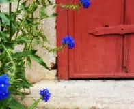 Fleurs près de vous Images stock