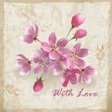 Fleurs réalistes de vecteur sur le papier floral peu précis Photos libres de droits