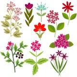 Fleurs réglées Photo libre de droits