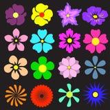 Fleurs réglées avec différent Illustration colorée de vecteur Photo stock