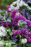 Fleurs romantiques de décor de mariage avec le lilas Image libre de droits