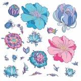 Fleurs romantiques de vecteur réglées Photo libre de droits