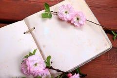 Fleurs roses à une page vide Photos libres de droits