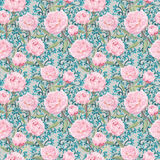 Fleurs roses élégantes de pivoine Modèle de répétition floral, décor fleuri de dentelle watercolor Photo stock